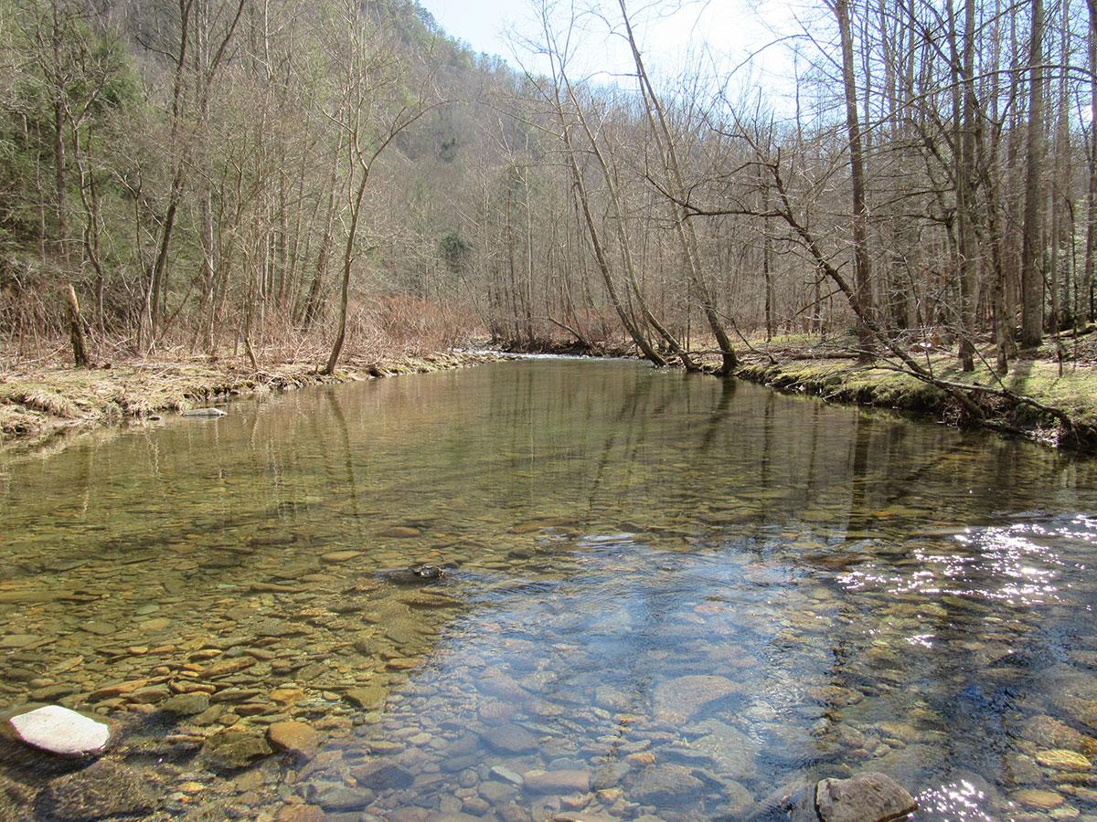 spring-creek
